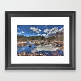 Early Spring Marsh Framed Art Print