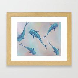 Whale Shark Dream Framed Art Print