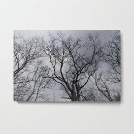 Black naked trees, creepy forest Metal Print