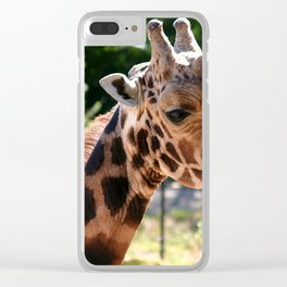 Baringo Giraffe with Child Clear iPhone Case