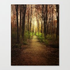 Woodland Wander Canvas Print