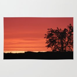 Sundown Rug