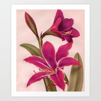 vintage floral Art Prints featuring Vintage Floral by 83 Oranges®