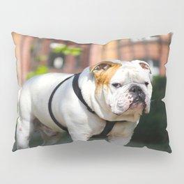 No Entry - Bulldog - Urban Scene #decor #society6 #buyart Pillow Sham