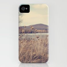 Mountain View  iPhone (4, 4s) Slim Case