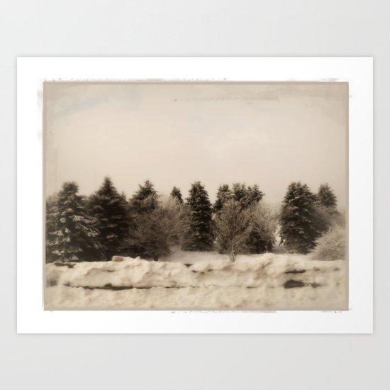 The gathering ~ Winter trees Art Print