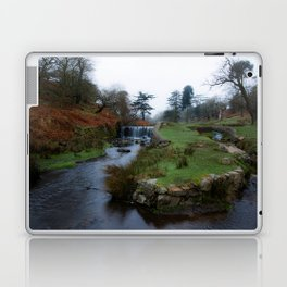 Stream in the park Laptop & iPad Skin