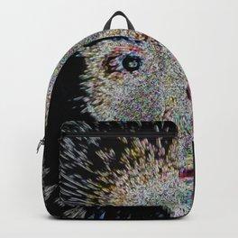 Soul 22 Backpack