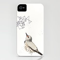 Northern Flicker iPhone (4, 4s) Slim Case