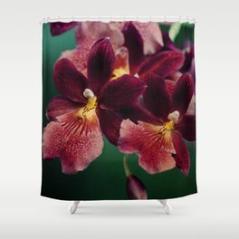 The mystery of orchid(13) Shower Curtain
