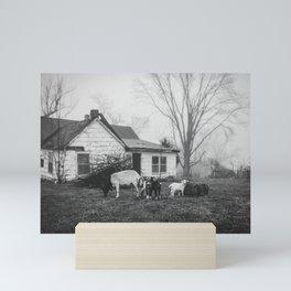 Foggy Morning on the Farm Mini Art Print