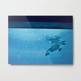 Orca Of The Ocean Metal Print