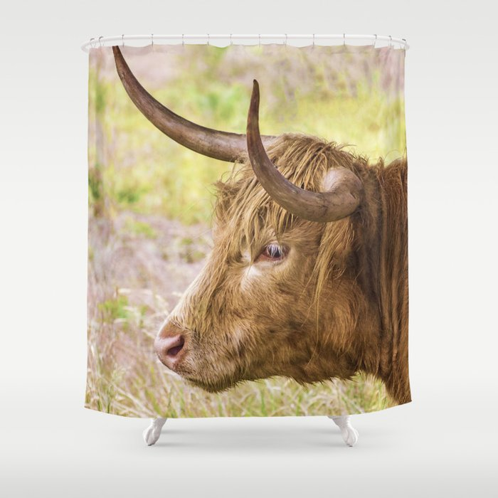 Longhorn 2 Shower Curtain By Linseywilliams