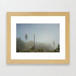 Hawk Forest Framed Art Print