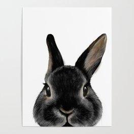 Netherland Dwarf rabbit Black, illustration original painting print Poster