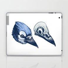Blue Jay Skull Laptop & iPad Skin