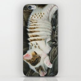 Sleeping Accordion iPhone Skin