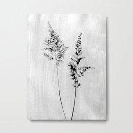 Delicate Black and White Botanical Photograph Metal Print