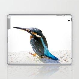 A Beautiful Kingfisher Bird Vector Laptop & iPad Skin