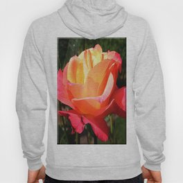 The Subject is Roses, 102 Hoody