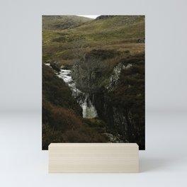 waterfall and tree Mini Art Print