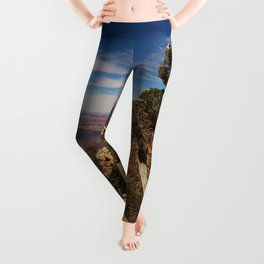 The Miracle Of Nature Leggings