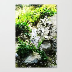 THE STREAM ALONG THE WAY Canvas Print