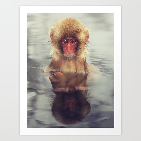 Reflecting Snow Monkey Art Print