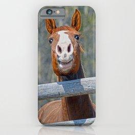 Horse Humour iPhone Case