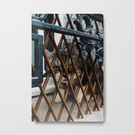 Les Cat Metal Print