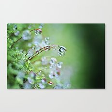 When you hear the fairies sing, you'll know you found my secret hiding place... Canvas Print