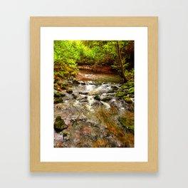 Motion in Muir Woods Framed Art Print