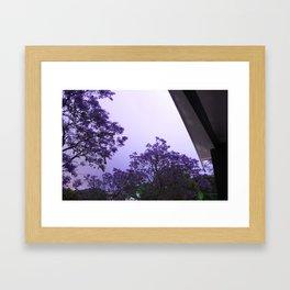 Jacarandas at night by Lightning Framed Art Print