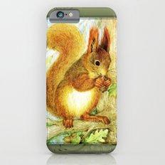 Squirrel iPhone 6s Slim Case