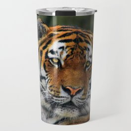 Amur tiger portrait Travel Mug