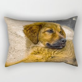 Stray puppy dog lying on the ground (2016-6T14) Rectangular Pillow