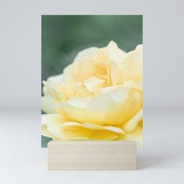 Yellow Rose || Nature, Floral Print Mini Art Print