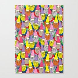 Mister Gnome Canvas Print