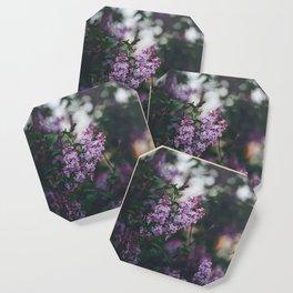 Lilacs Coaster