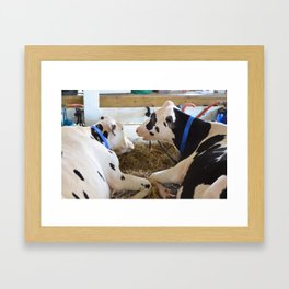 Pair Of Black And White Cows 2 Framed Art Print