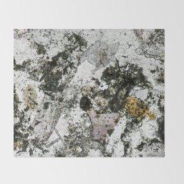 Hornfels 02 - Frozen Still Life Throw Blanket