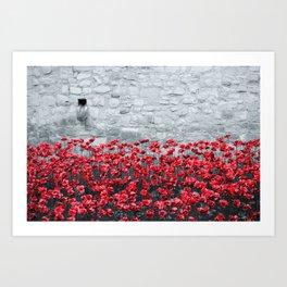 Tower Poppies 02B Art Print