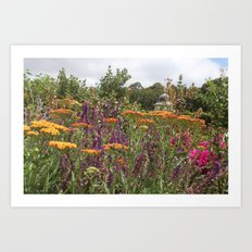 Botanical Garden Colour Art Print