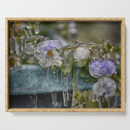 Pansies on Ice Serving Tray