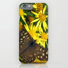 Speckled Wood iPhone 6 Slim Case