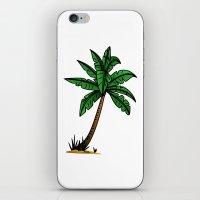 palm tree iPhone & iPod Skins featuring palm tree by Li-Bro