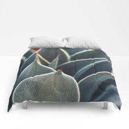 Sienna Comforters