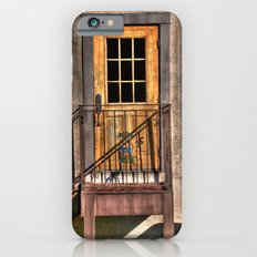 Back Door of the Winery iPhone 6s Slim Case