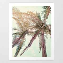 Sunny San Diego Day with Palm Trees Art Print