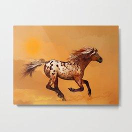 HORSE - An Appaloosa called Ginger Metal Print